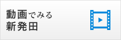 動画で見る新発田